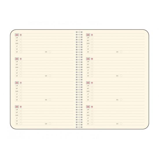 Agenda Idea, 16.3 x 24 cm, 224 pagini