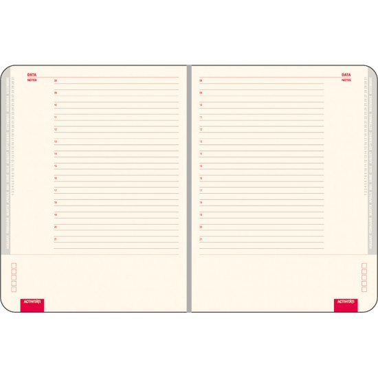 Agenda Arizona, 16 x 21 cm, 296 pagini