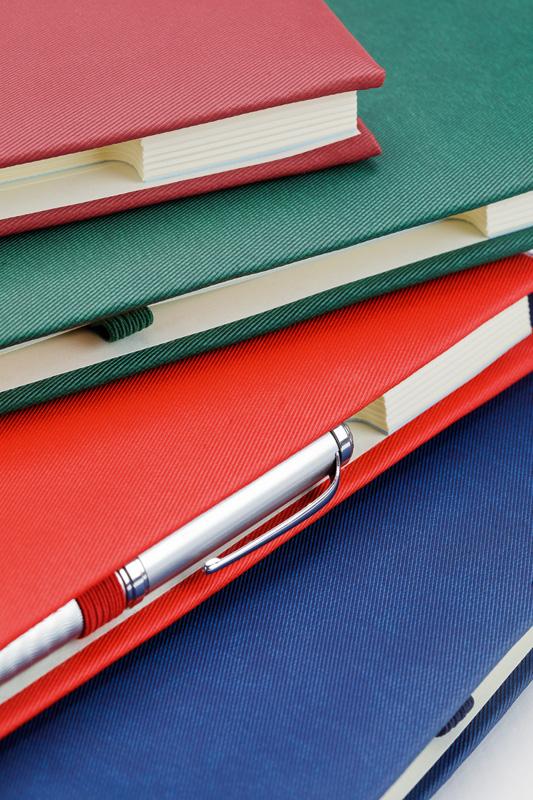 Agenda Ideal 16 X 23.5 Cm 232 Pagini sanito.ro